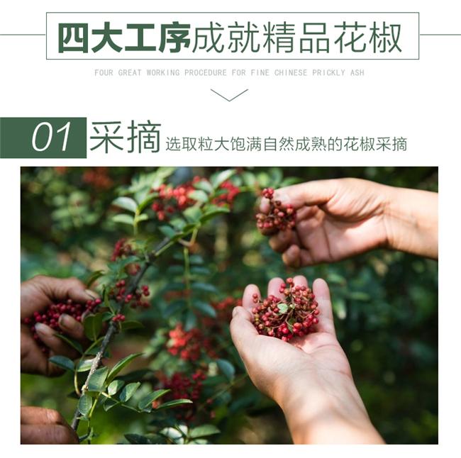 四川花椒批发火锅串串店专用C5.jpg