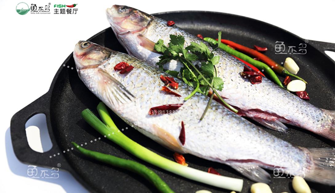 鱼不多主题餐厅特色麻椒鱼火锅加盟中心