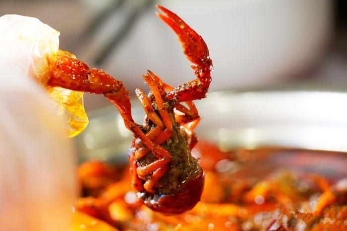 夏天火锅串串店的龙虾怎么做好吃