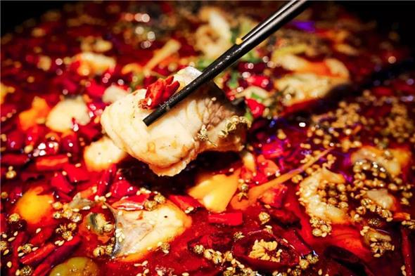 最火的鱼火锅是哪个品种加盟B.jpg